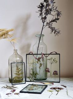 Master the art of flower pressing with this simple how-to guide. Display dried plants and flowers, such as fern leaves and cow parsley stems, in glass frames for a lasting seasonal arrangement. (diy arts and crafts simple) Cuadros Diy, Dry Plants, Navidad Diy, Pressed Flower Art, Pressed Flowers Frame, Pressed Leaves, Deco Floral, Diy Weihnachten, Diy Christmas Gifts