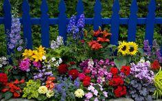 Feria de las flores en Tonalá