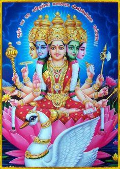 Saraswati Goddess, Durga Maa, Shiva Shakti, Goddess Lakshmi, Goddess Art, Gayatri Devi, Gayatri Mantra, Durga Images, Lakshmi Images