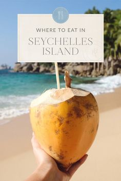 seychelles honeymoon The Ultimate Seychelles Islands Travel Guide The Blonde Abroad Seychelles Honeymoon, Seychelles Islands, Fiji Islands, Canary Islands, Cook Islands, Beautiful Places To Travel, Romantic Travel, Travel Guides, Travel Tips