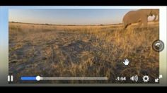 Now Playing: Facebook and Instagram Introduce New Video Tools       Now Playing: Facebook's Icon Change Explained       Now Playing: AT&T now offers unlimited data plans        Now Playing: Facebook unveils job postings feature       Now Playing: Nokia bringing back their popular... http://usa.swengen.com/facebook-launches-stand-alone-tv-app-to-compete-with-youtube-video/