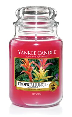 Yankee Candle - Tropical Jungle Candle - Glass/Red