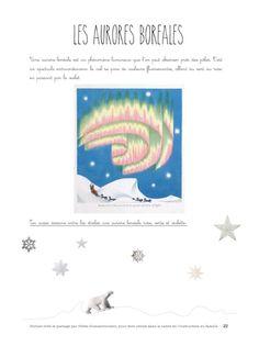 aurores boréales et autres activités sur le pôle Nord pour la maternelle. Just Magic, Petite Section, Arctic Animals, Help Teaching, Learn French, Winter Scenes, Continents, Techno, Homeschool