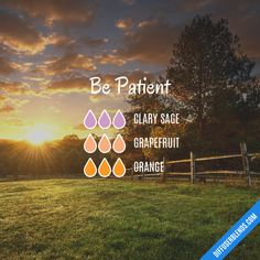 Be Patient - Essential Oil Diffuser Blend