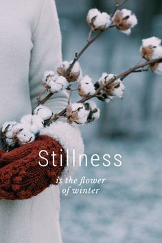 Stillness is the flower of winter Like snowflakes, the human pattern is never cast twice. We are uncommonly and marvelously intricate in thought and action. Alice Childress Winter blows a frosty coat that caps the barren land. Samuel Taylor Coleridge Advice is like