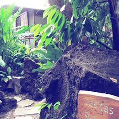 Jungle paths picture from @minnamottonen 🍃🌿 #jicaroisland #lakenicaragua #getaway #mondolehti  #sustainability #cooperativa #natgeolodges #islandlove #islandlife #privateisland #wild #junglelife #immersed #naturelover #hotelgoals #travelerschoice #traveldonedifferently #thecayugaway