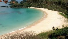 Um circuito pelas praias paradisíacas da ilha mais charmosa do Brasil - Boa f. noronha #paraiso #ilhas #praias