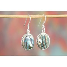 Abalone Shell Gemstone 925 Silver Earring via Polyvore featuring jewelry, earrings, shell jewelry, silver gemstone jewelry, gemstone earrings, seashell earrings and silver shell earrings