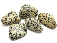 Dalmatian Jasper cleanses the aura and any other dysfunctional energies, dispels/transmutes negative energy (due to the black Tourmaline inclusions), and protects the user from harm. Use Dalmatian Jasper when you are feeling down and out. It will restore a sense of fun and childlike wonder a true pick me up!