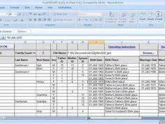 Main Tab Data Input Area & GEDCOM Creating Macro Button