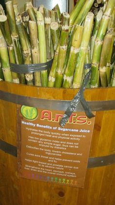 filipino food:  tubo (sugar cane)