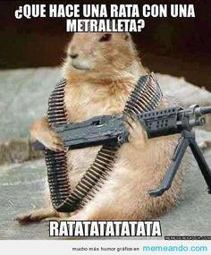 Date un relax con estos memes de animales – La voz del muro