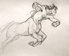 centaur drawing tumblr - Google Search