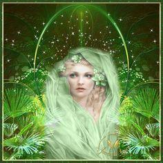 Cantinho de Imagens da Guerreira: Natureza