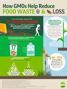 How GMOs Help Reduce Food Waste & Loss? In the United States, approximately 133 billion pounds of food is wasted annually. GMOs help farmers minimize these losses and grow more food using less land.