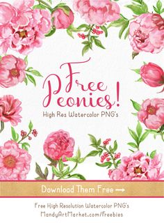 Free Watercolor Peonies Clipart now available! 1 18 pretty, high res PNG peonies - perfect for invitations!  #free #watercolor #flowers #peonies