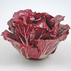 Tuscan Radicchio in porcelain Porcelain Vase, Fine Porcelain, Vintage Pottery, Pottery Art, Ornamental Cabbage, Vegetable Stand, Leaf Projects, Dining Room Table Centerpieces, Diy Design