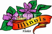 Dynamic Art Summer Camps in Illinois