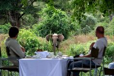 Singita Lebombo in Kruger National Park is the South African safari lodge that's breaking all the rules. Kruger National Park, National Parks, Private Safari, Winter Lodge, South Africa Safari, Africa Destinations, Natural Ecosystem, African Safari, Best Places To Travel