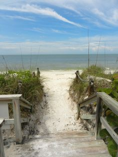 Walk way to paradise. Barefoot Beach Bonita Springs, FL.....love this beach. I live here