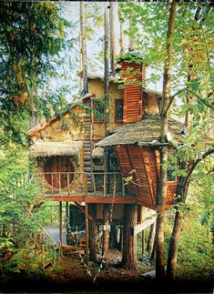 How To Build A Treehouse ? This Tree House Design Ideas For Adult and Kids, Simple and easy. can also be used as a place (to live in), Amazing Tiny treehouse kids, Architecture Modern Luxury treehouse interior cozy Backyard Small treehouse masters Treehouse Masters, Treehouse Living, Building A Treehouse, Treehouse Ideas, Treehouse Cabins, Log Cabins, Cool Tree Houses, Cozy Backyard, Tree House Designs