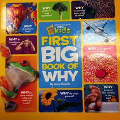 Welcome to DomiKiddos!: Five for Friday: Earth Week in Domikiddos