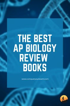 what is the best ap literature review book