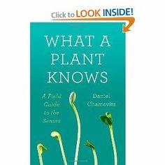Amazon.com: What a Plant Knows: A Field Guide to the Senses (9780374288730): Daniel Chamovitz: Books