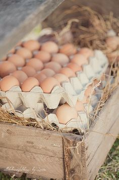 Farm Fresh Eggs -  #10MINUTEWOW + #DELMONTECONTEST @delmontebrand