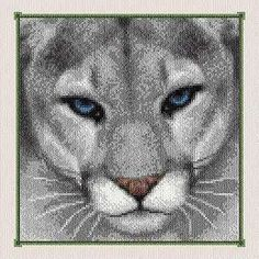 blue-eyed cougar stitched in shades of grey