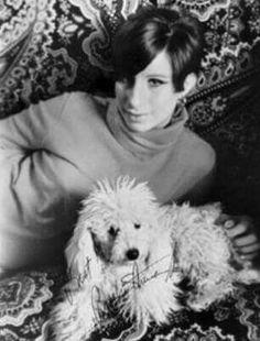 Famosos con Mascotas Barbra Streisand