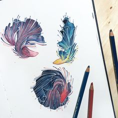 "kelogsloops: ""inktober day 14 - the dance of the siamese fighting fish """