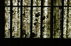 Abstract two; overhead panel; Old Melbourne Gaol; Melbourne, Australia.  January 2014.