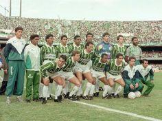 Palmeiras comemora 20 anos de título paulista e fim de jejum; relembre - Terra Brasil
