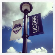 UCONN! I just got my official acceptance!!! :D I feel on top of the world!! All the work from the last two plus years have paid off, ten times over! Make your dreams come true, you can do it! Go Huskies!!!