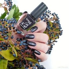 trend it up Trend It Up, Natural Nails, Manicure, Nail Polish, Fall, Collection, Ongles, Nail Polishes, Nail Bar