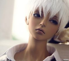 [Limited]NEW EVAN limited edition Tan Skin|DOLKSTATION - Ball Jointed Dolls Shop - Shop of BJD Dolls