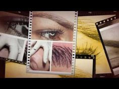 My Stupeflix Video 7
