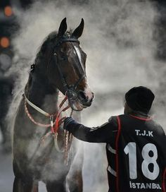 Photo by Kadir Civici, master photographer of the Jockey Club of Turkey. Embedded image permalink