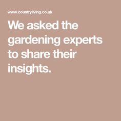 We asked the gardening experts to share their insights.