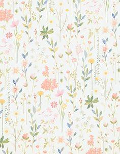 Field of Flowers - Field of Flowers - 3900012