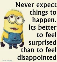 Well Said Quotes By #Minions