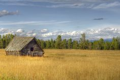 Have you been to Donnelly, Idaho? http://appetiteforidaho.blogspot.com/2011/09/buffalo-gal.html