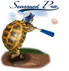 LuckyTortoise is an independent artist creating amazing designs for great products such as t-shirts, stickers, posters, and phone cases. Tortoises, Turtle, Great Gifts, Phone Cases, Graphic Design, Seasons, Baseball, Christmas Ornaments, Holiday Decor