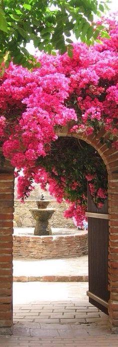 Garden entrance!~