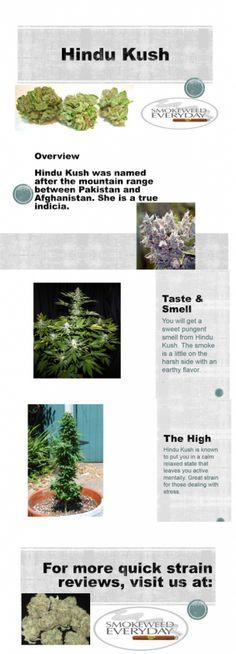 #Marijuana Click --> SmokeWeedEveryday.Org