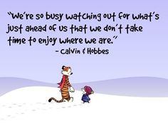 We're so busy watching out for what's just ahead of us that we don't take time to enjoy where we are. - Calvin & Hobbes