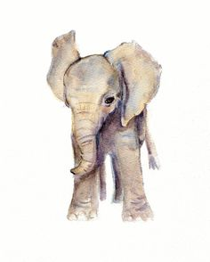 Elephant Baby Watercolor Nursery Print from Original painting  5 X 7 via Etsy