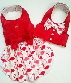 Chaleco arnés y perro vestido en el arnés: Flamingo o