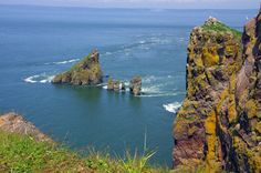 One of Nova Scotia's Great Day Hikes: The Hike to Cape Split - Hike Bike Travel Nova Scotia Travel, Annapolis Valley, East Coast Travel, Atlantic Canada, Newfoundland And Labrador, Day Hike, Canada Travel, Summer Travel, Traveling By Yourself